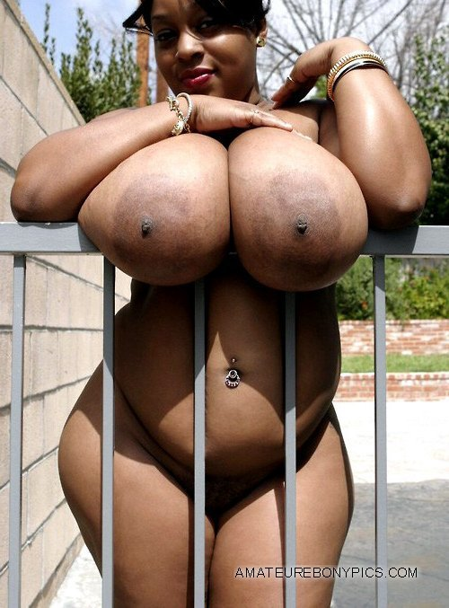 fat ebony nude