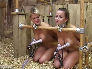 Bikini slave suck cock and anal